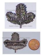 Austria Hungary WW1 131st Infantry Brigade Cap Badge JNF. 131. BRIG.