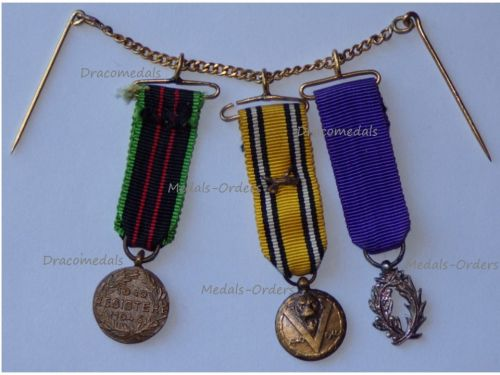 Belgium France WW2 Set of 3 Medals (Belgian Armed Resistance & Commemorative Medal with Swords, French Order Academic Palms Knight's Badge)