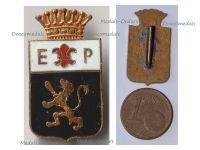 Belgium Cap Badge Airbase Protection Squadron 1950s