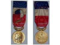 France Trade Labor Gold Medal palms Civil 1966 Decoration French Award 30 years service 5th Republic