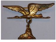 France WW1 Air Force Wings Lion Belfort patriotic badge pin WWI 1914 1918 Decoration French Great War