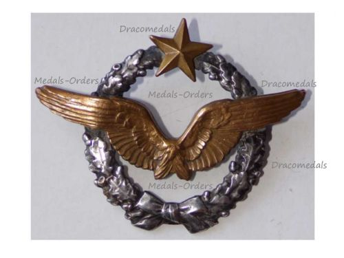 France WW1 Pilot Wings Badge French Air Force 1914 1918 Numbered