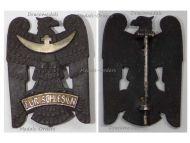 Germany Silesian Eagle Badge 1st Class Freikorps 1919 Weimar Republic
