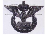 Germany State Railway Service Badge 25 Years Prussia WWI Medal 1905 1918 Decoration German Railroad Train WW1