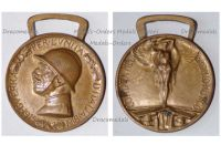 Italy WW1 Italian Unification Commemorative Medal for the War of 1915 1918 by Nelli Inc