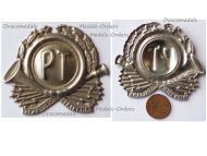 Italy Cap Badge Postal and Telegraph Service
