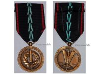 Poland WW2 Polish Resistance France Military Medal Decoration WWII 1939 1945 Award Blitzkrieg